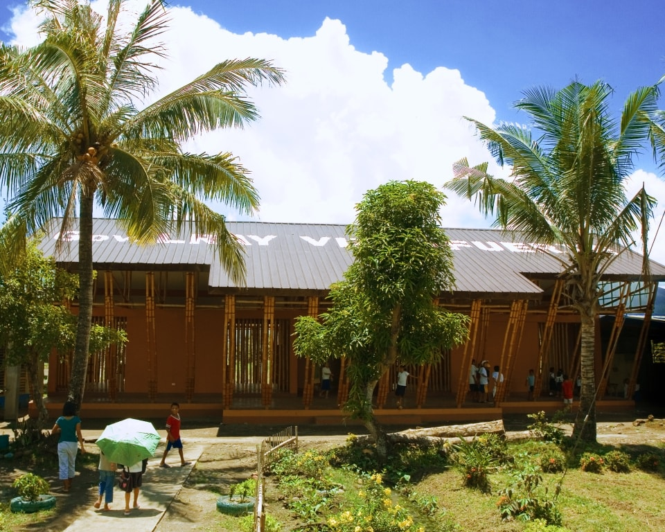 Bamboo Construction, facts about bamboo