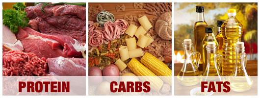protein carbs fats