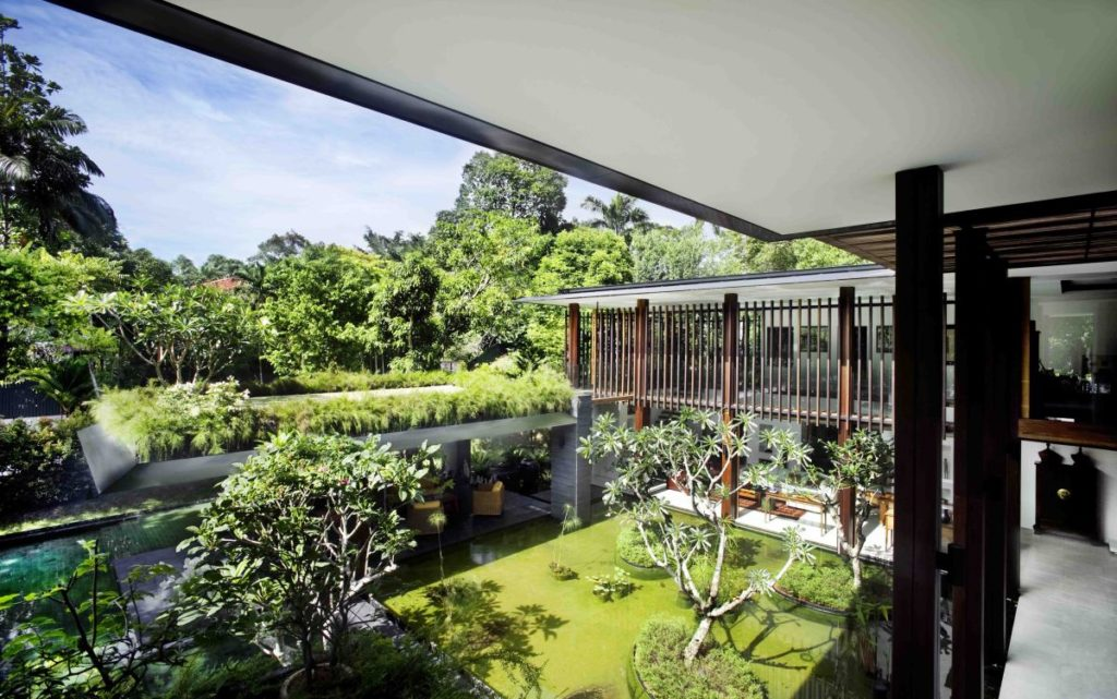 Eco Home Roof Garden