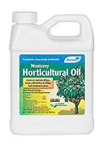 Eco Friendly Pest Control, Horticultural Oil