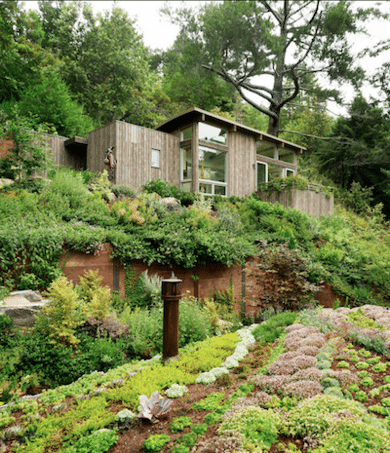Eco Friendly Modular homes and nature
