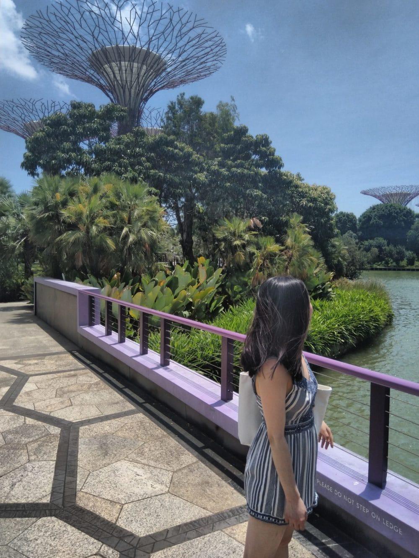 Garden at the Bay, Singapore