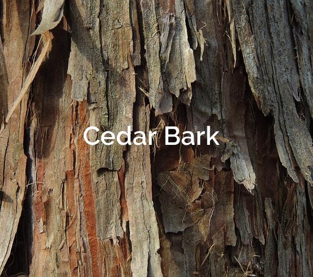 Cedar Bark Fibers
