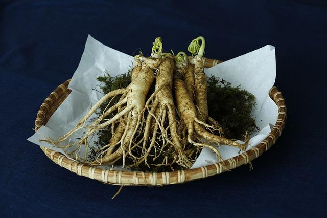 Ginseng Root Medicinal Plant