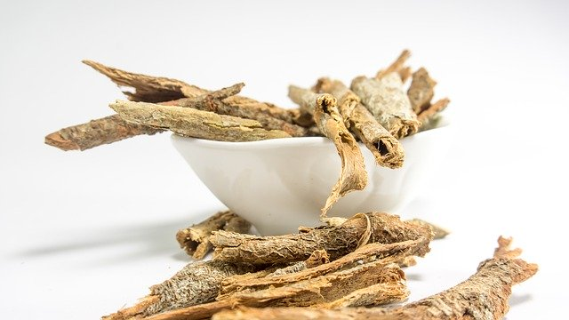 Medicinal Wild Tree Bark
