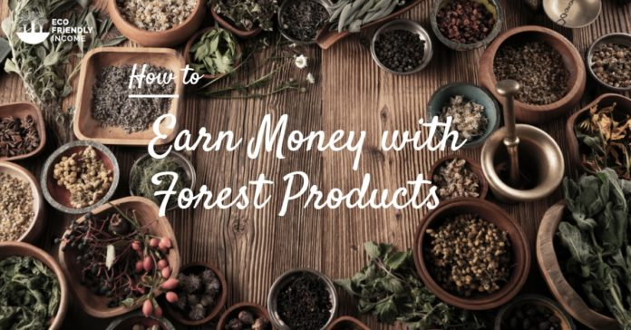 Gathering Non-Timber Forest Products