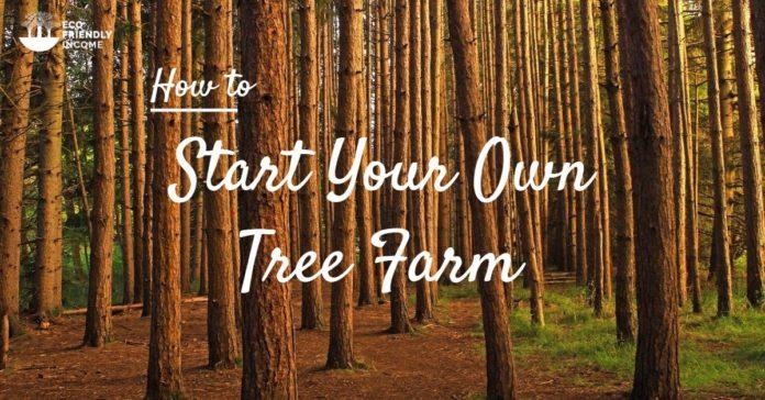Hybrid Tree Farming