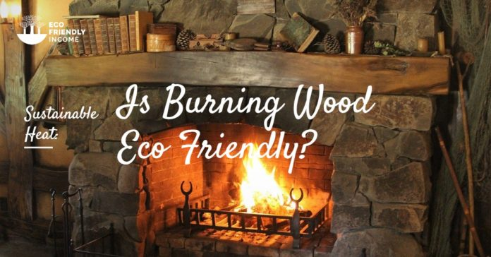 Sustainable Heat Burning Wood Eco Friendly