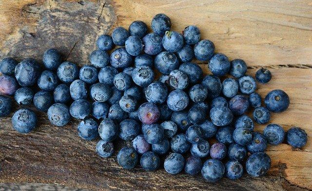 Wild-Tea-Ingredient-Blueberry