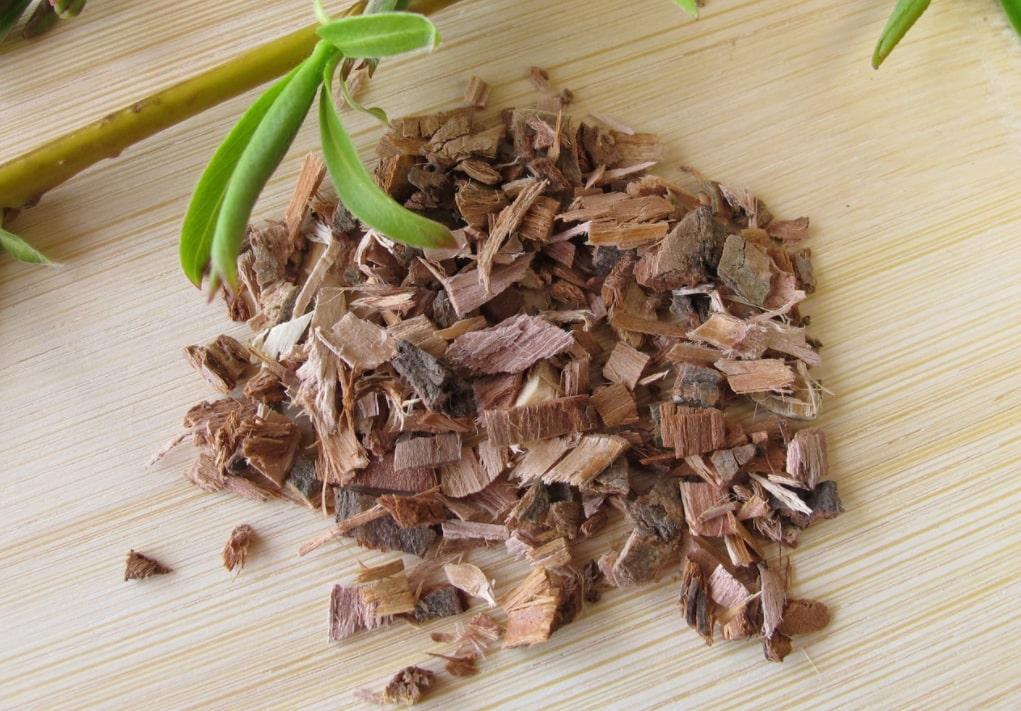 Wild Tea Ingredient Willow Bark