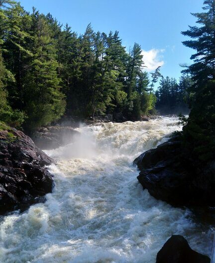 boreal_forest_rapids