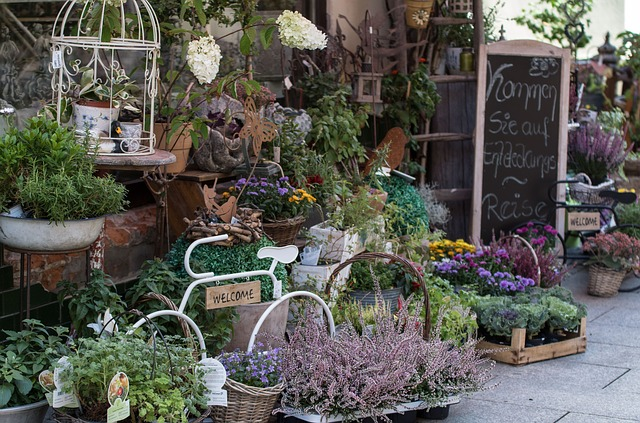 Start-a-Plant-Nursery-Plant-Sale